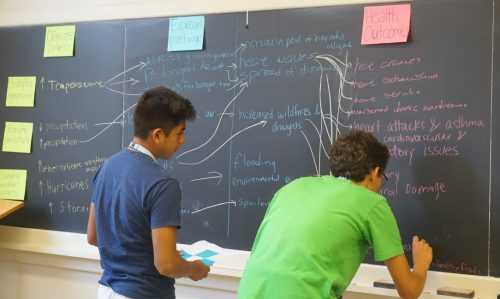 Students contribute to a flow chart drawn on a classroom chalkboard.