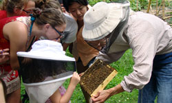 Health behavior alumna Anne Cabel conducts a beekeeping workshop at the Carolina Campus Community Garden.