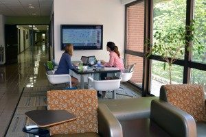 Students study at one of the many collaborative spaces in the Gillings School.