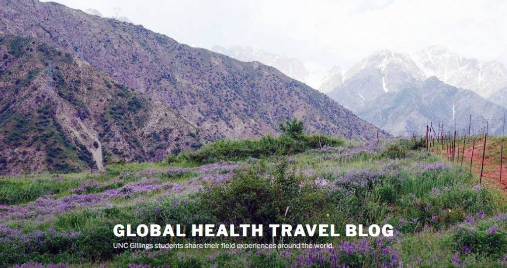 UNC Gillings students share their field experiences around the world in our Global Health Travel Blog.