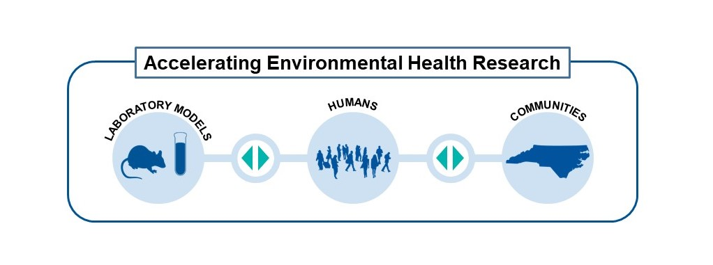 Under a banner reading Accelerating Environmental Health Research there is a list of three categories of research. Reading from left to right the categories are: Laboratory Models, Humans, and Communities. There are bi-directional arrows in-between each category.
