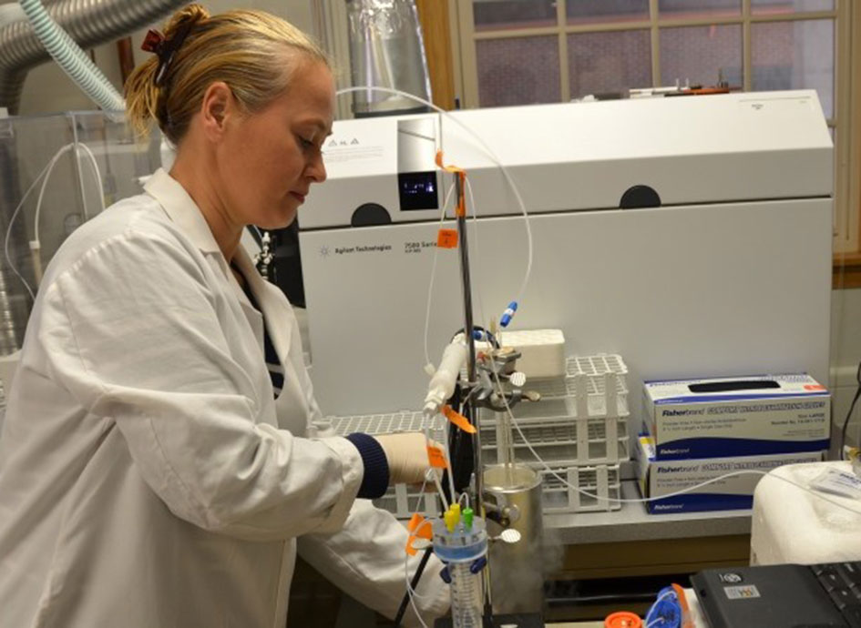 A researcher works in a nutrition lab.