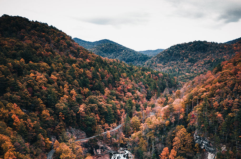 Pictured are the mountains of NC in the Fall.