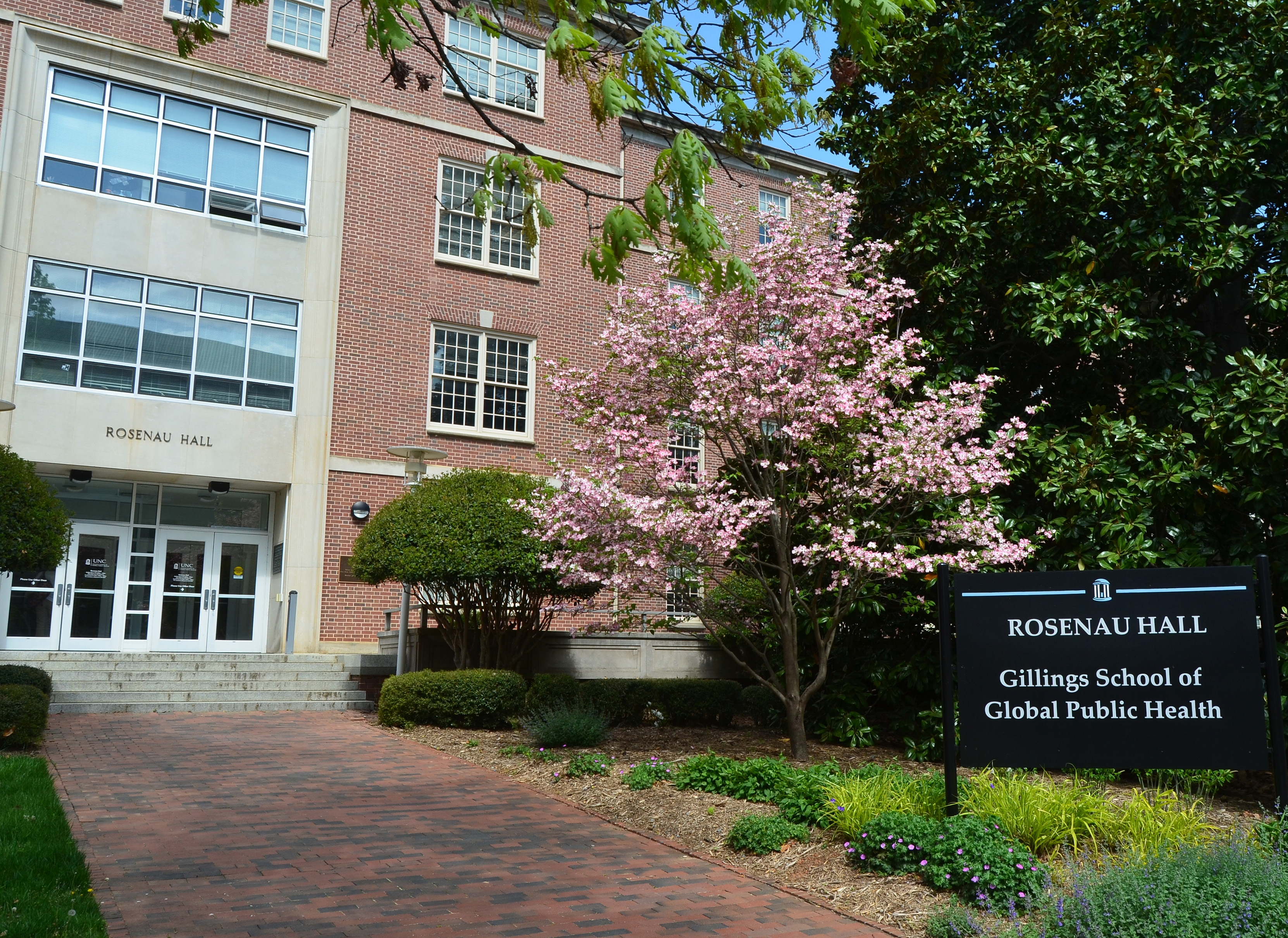 In spring, the dogwood trees bloom outside Rosenau Hall.