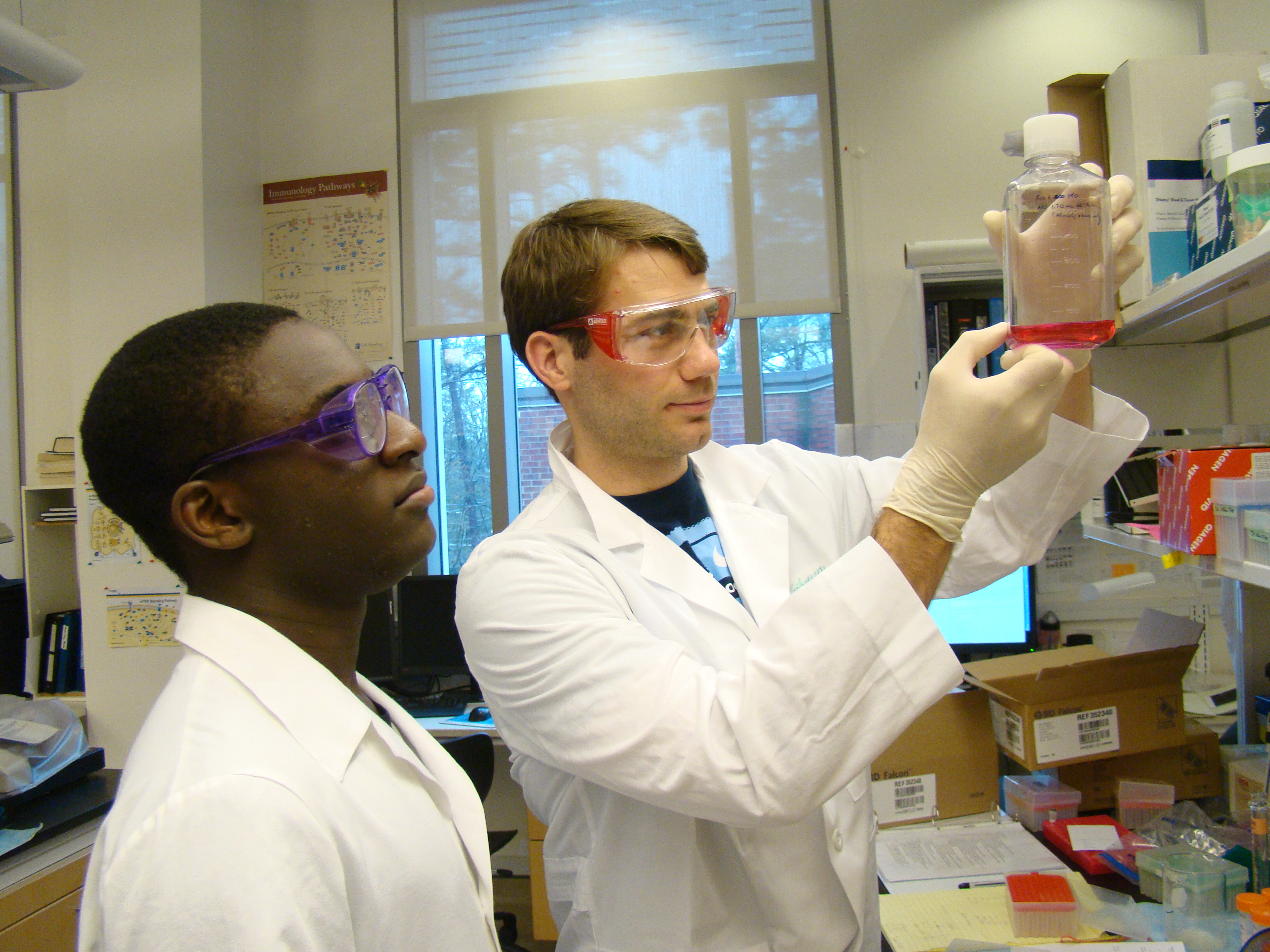 Two students from the Department of Nutrition analyze a sample.
