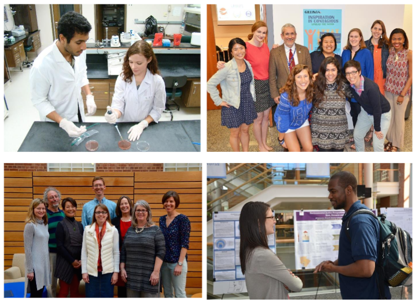 Clockwise from top left: Environmental sciences and engineering alumni Abhinav Komandur and Alyson Malone, pictured here as students in their lab, wo n an award for their research; T he Gillings School's Student Global Health committee (with adviser Dr. Jim Herrington, third from left) planned the Gillings X talks to reflect students' global and local research and service; A student explains her research findings at a 'Spotlight on Student Research' event at the School; Winners of the 2016 Teaching Innovation Awards posed during a ceremony to honor them.