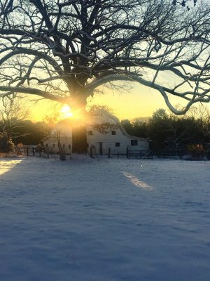 The barn makes for a picturesque snowy sunrise.