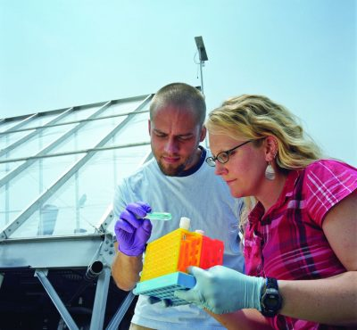 Alum Seth Ebersviller and Elizabeth Naess examine samples by the smog chamber.