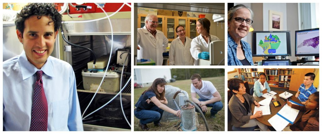 A collage of photos showing Gillings researchers at work in the lab and in the field.