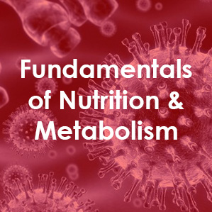 Text reads Fundamentals of Nutrition and Metabolism