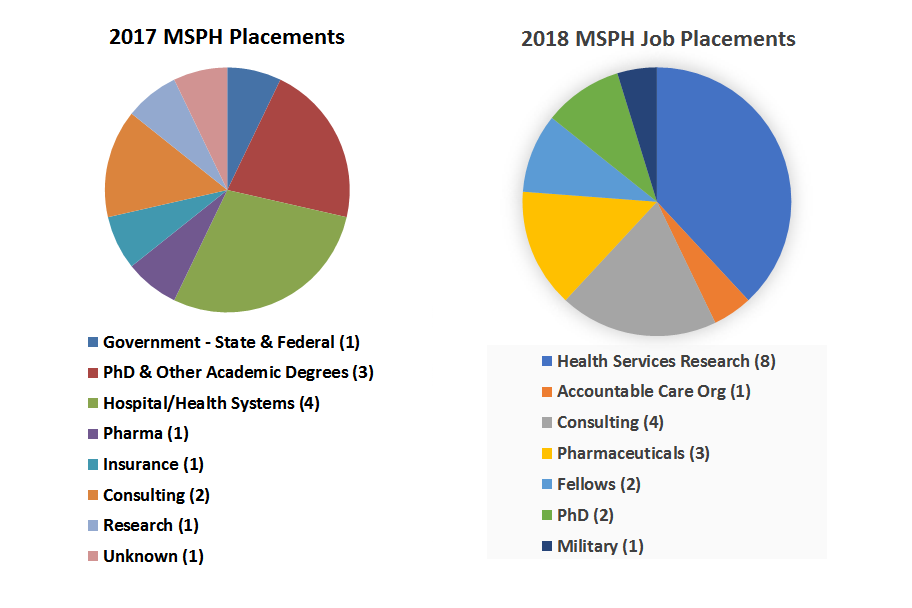 In 2017, MSPH graduates were spread across many disciplines including hospital and health systems and PhD and other degree programs. In 2018, MSPH graduates worked mostly in health services research and consulting.
