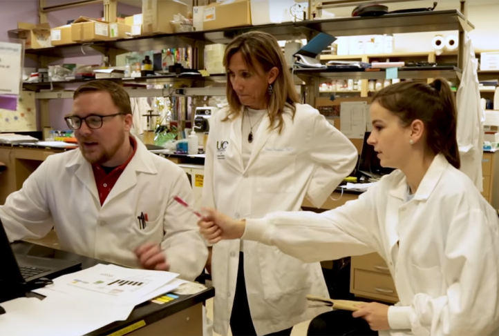Dr. Ilona Jaspers (center) collaborates with other researchers in her lab.