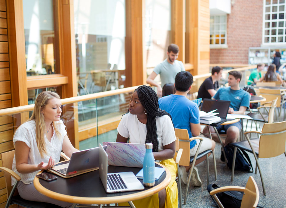 Students study in the Armfield Atrium.