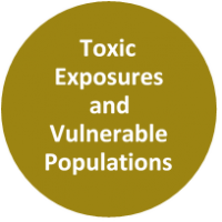 Text reads Toxic Exposures and Vulnerable Populations
