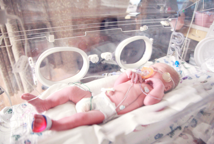 A newborn baby sleeps in a NICU incubator.