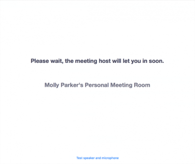 This image shows the message that attendees see when entering a Zoom waiting room.