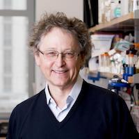 Dr. Michel C. Nussenzweig (Photo by The Rockefeller University)
