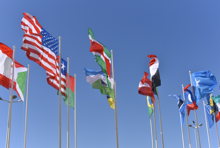 Flags from many countries flutter in the breeze.