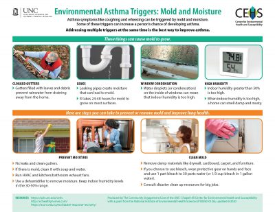 Environmental Asthma Triggers: Mold and Moisture