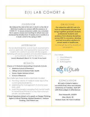 The E(I) Lab provides an overview of cohort six's work.