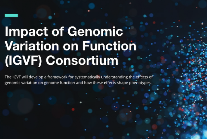 This is the header of the Impact of Genomic Variation of Function website.